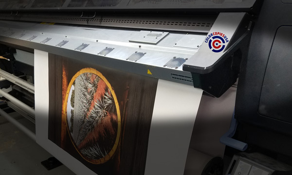 The picture shows an large format printer printing a custom banner. In the picture the strong colors are noticeable as card card-body as the levels of saturation and realism.